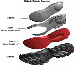 parts of the sole